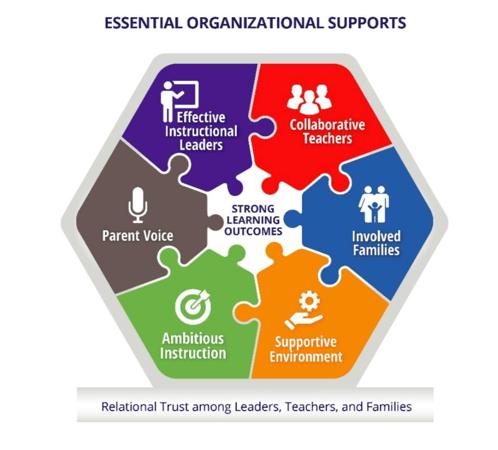 essential organizational supports