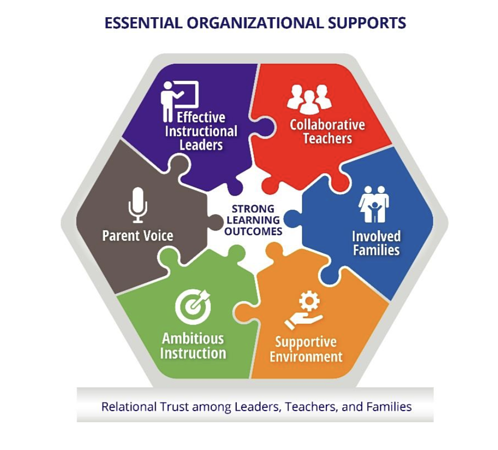 essential organizational supports
