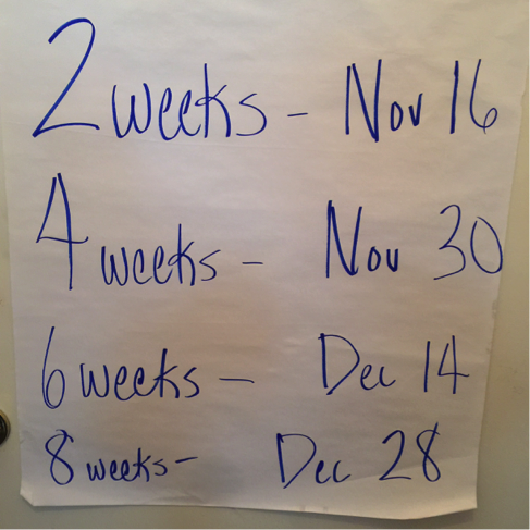 Example Testing Timeline Dates